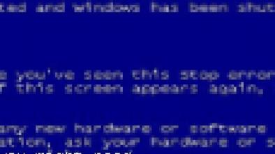 ブルーパニック,windows