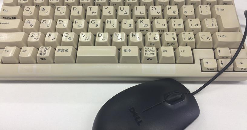 雑菌はキーボードとマウスで自家培養?
